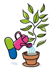 qualite-gelule-plante